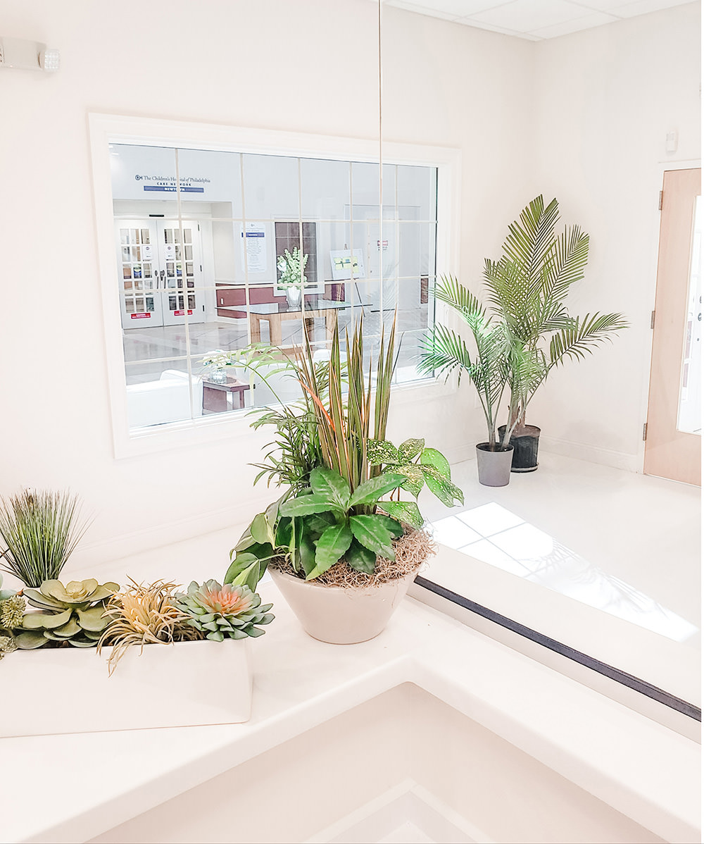 Our wonderful new front desk area, filled with plants!